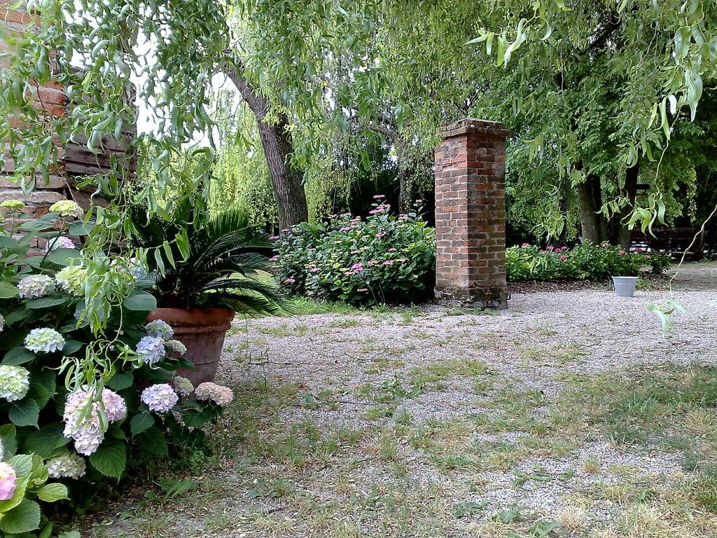 Progettazione giardini e vendita diretta bustaffa for Giardini case di campagna